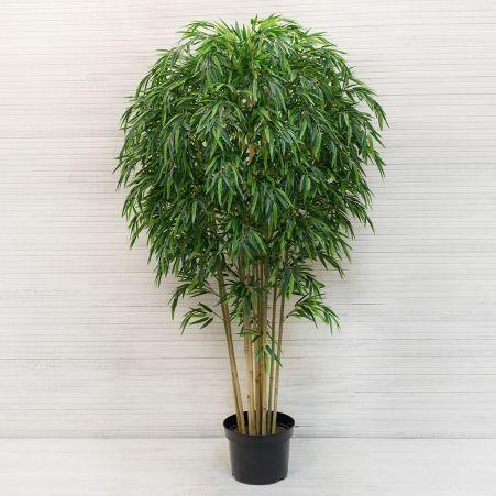 200/ШК/75-4(з.) Бамбук Премиум*12стволов (латекс) h200см