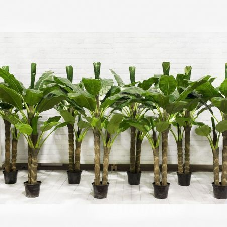 ПК210/2С/43(з.) Банановая пальма h-210см (латекс)