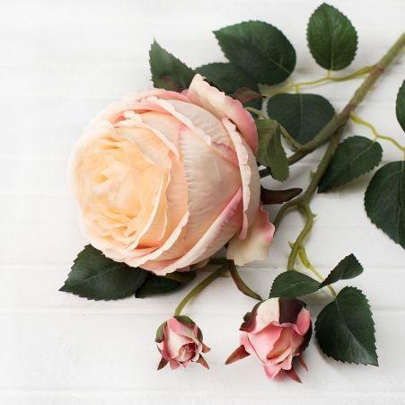 401/0010-13L Роза пионовидная искусственная h-75см персиковая (1г+2б)