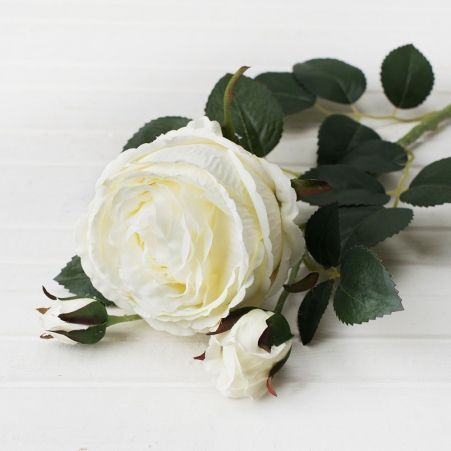 401/0010-23L Роза пионовидная искусственная h-75см белая (1г+2б)