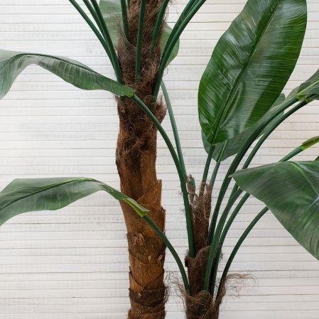 ПК250/2С/43(з.) Банановая пальма h-250см (латекс премиум)