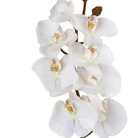 401/0012-4L Орхидея искусственная латекс h-99см кремовая (8г+5б)