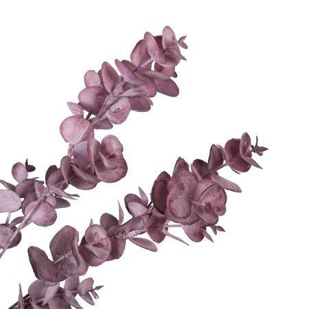 7143/0016-36/1-3 Ветка Эвкалипт  h=75см (40+35) пепельно-розовый