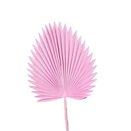 7143/0030-8/1(Promo) Лист Веерной пальмы искусственный, розовый, h 88 см (35+53)