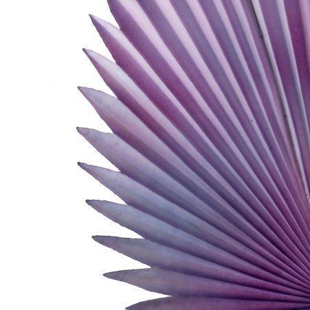 7143/0030-8/17 Лист Веерной пальмы искусственный, фиолетовый, h 88 см (35+53)