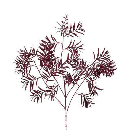 7143/0041-5/11-2 Ветка Розмарина искусственная,темно-бордовая, h 95 см (55+40)