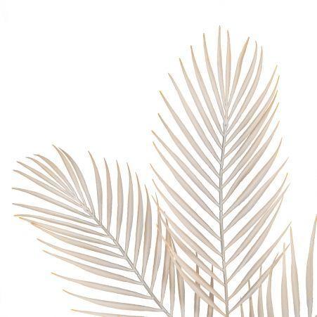 7143/0047-3/4 Ветка Пальмы искусственная,кремовая, h 68 см (48+20)