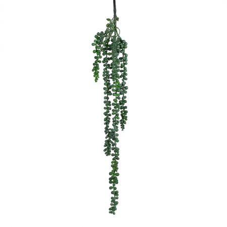 7143/0183-1 Суккулент Крестовник Роули*4 h=63см(55+8) зел/изумруд(7143/0046-10)