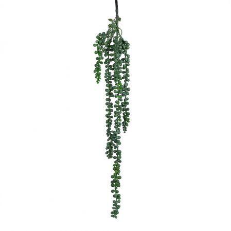 7143/0183-1 Суккулент Крестовник Роули ампельный искусственный, h 63 см(55+8) (7143/0046-10)
