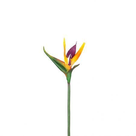 7143/9130-6  цветок Стрелиции короткий 62см (14+48)