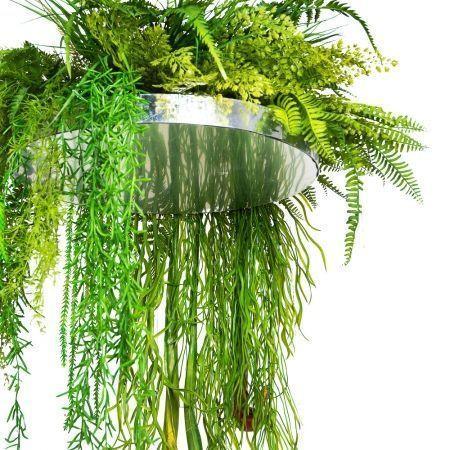 КЗ 24 Тропический микс с Сараценией на основе d 40см с зеркальным дном