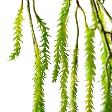 7143/0183-2 Ветка Крассулы мшистой искуственная, латекс, h 110 см (60+50)