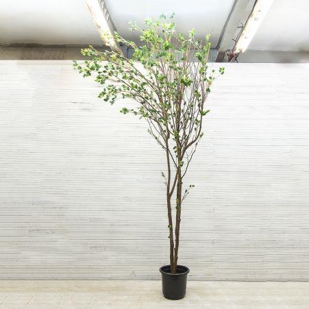 300/РН/172-1(з.) Дерево интерьерн.с распускающ.листочками h-300см (правое)