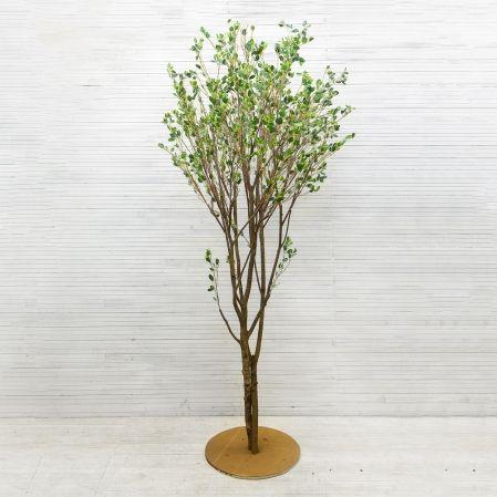 270/РН/200(з.) Дерево с распускающимися листочками h-270см