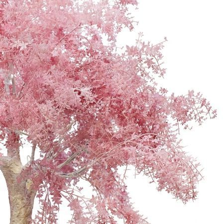 200разб/363 Дерево интерьерное h-200см (латекс)