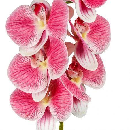 401/0347-1 Орхидея латекс с прожилками h97см розов.(9г;4б)