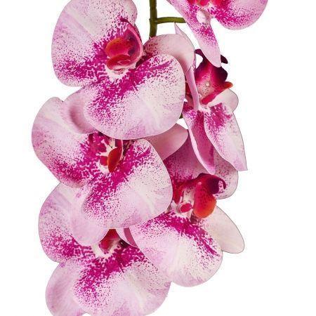 401/0187-18 Орхидея искусственная латекс h 95см св.сирен. (9г.)