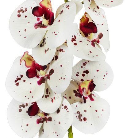 401/0187-23-1 Орхидея искусственная латекс h 95см бел.-бордов. (9г.)