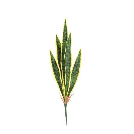 7143/0382-2/3 Сансевиерия (щучий хвост) маленьк.(желт.)h 55 см