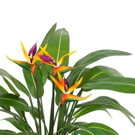 К75*6-1 Стрелиция куст с цветами большой h-75см (силикон/латекс)   в кашпо d-19