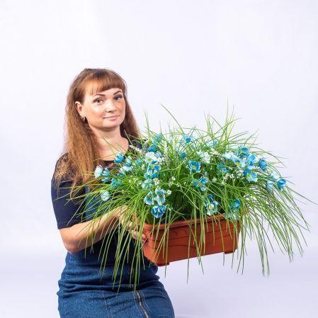 """Ц450 Французский балкон """"Космея с травой""""(80*60*h 40см) (голубой)"""