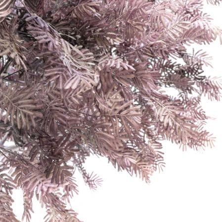 300разб/365(Promo) Дерево интерьерное h300(латекс)(лиловое)