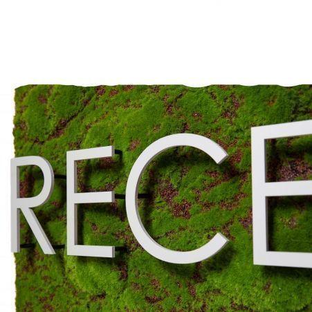 Логотип RECEPTION 120*h50