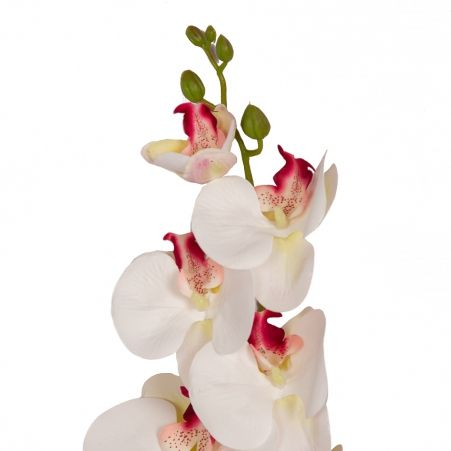 401/0150-11B Орхидея h98см(латекс) белая с бордо