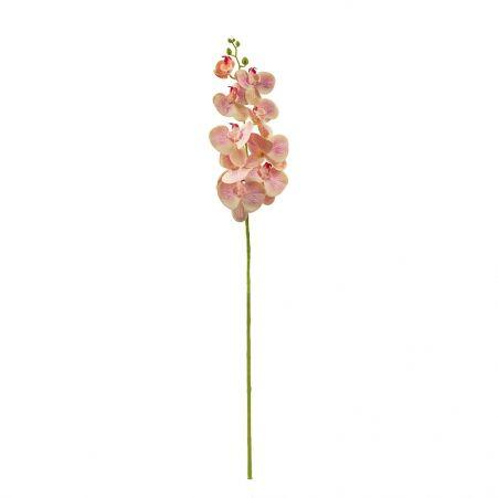 401/0150-14B Орхидея h98см(латекс) желто-розовая с прожилками