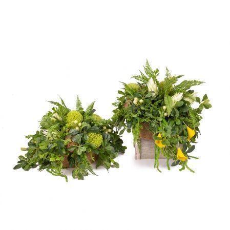 К08/2-1(з.) Композиция цветочная h30см в круглом кокосовом боксе d29;h10