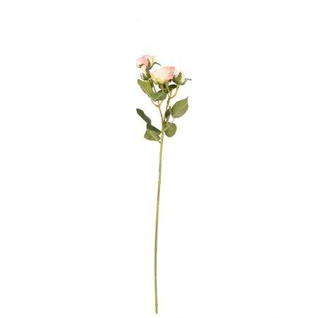 401/0159-4В Роза кустовая *5 h60см (кремово-розовая)
