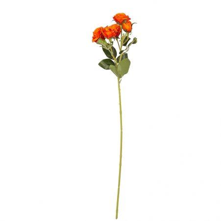 401/0159-18В Роза кустовая *5 h60см (оранжевая)