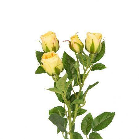 401/0159-3В Роза кустовая *5 h60см (желтая)