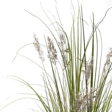 ЦС107 Трава Осока раскидистая с камышом h108см в кашпо d15см