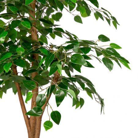 160/РУ/34-1(з.) (Уценка)Фикус разноуровневый зеленый (латекс) h160см