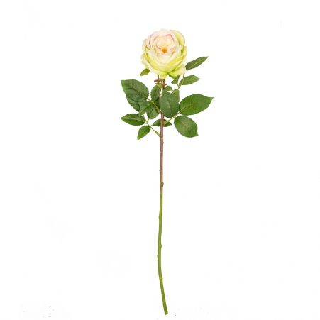 401/0520-9А Роза зелёная