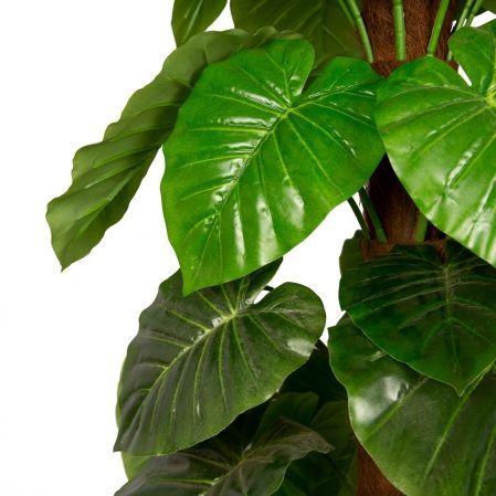 К150/139 Филодендрон зеленый