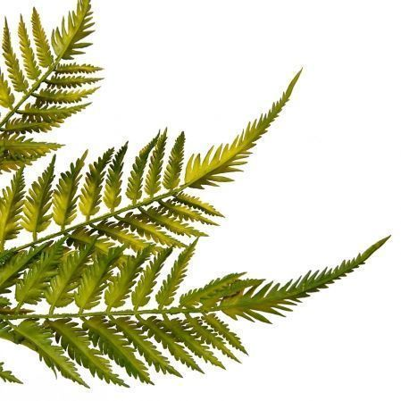 7143/9126-022 Папоротник большой *6 h55см (45+10) зеленый (латексир.)