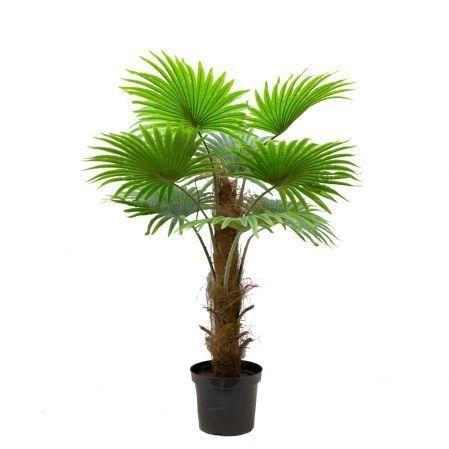 П120/404(х)(Promo) Пальма веерная h120см (латекс)
