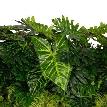 К353-3(з.) Зелень микс из папоротников с монстерой в кокосовом боксе 65,5*19,5*7
