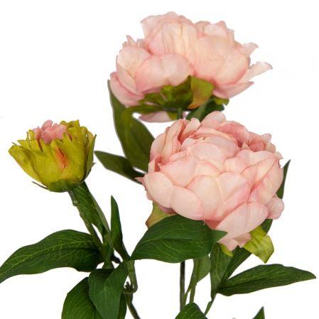 7141/9191-5/5 Пион 2гол. 1 бут. d12; h60см (светло-розовый)