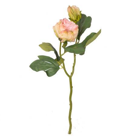 7141/9191-8/1 Пион Ретро 1гол. 1бут d8; h50см (розовый)