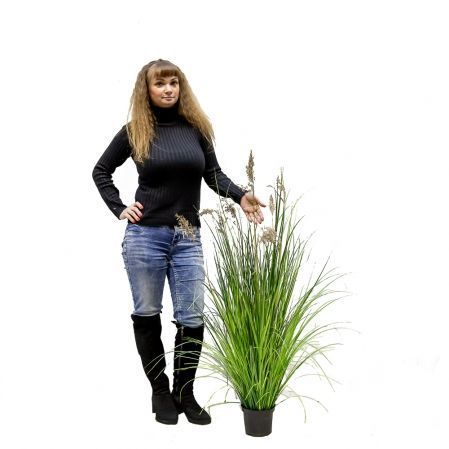 ЦС119 Трава Осока широкая раскидистая с камышом h115см в кашпо d15см