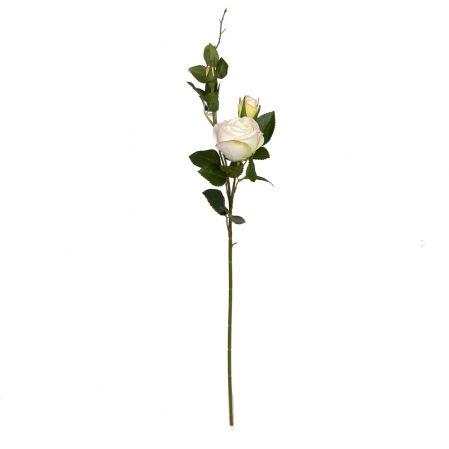 7141/9191-4/23 Роза 1гол+2бут. h72см (белая)