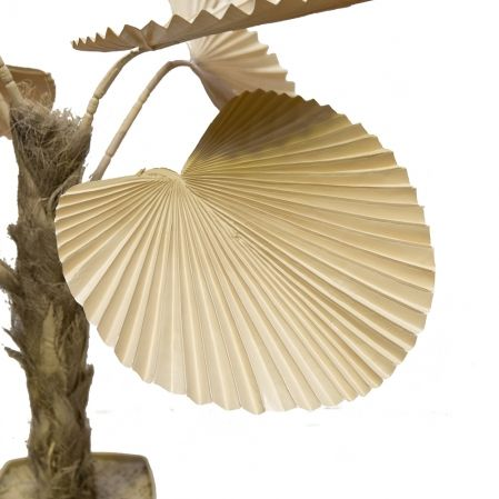 П110/358-5 Пальма веерная бежевая h110см(латекс)в интерьерном кашпо
