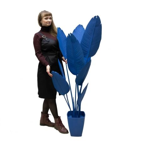 150/К/360(з.) Банановая пальма h150см(синяя) в интерьерном кашпо