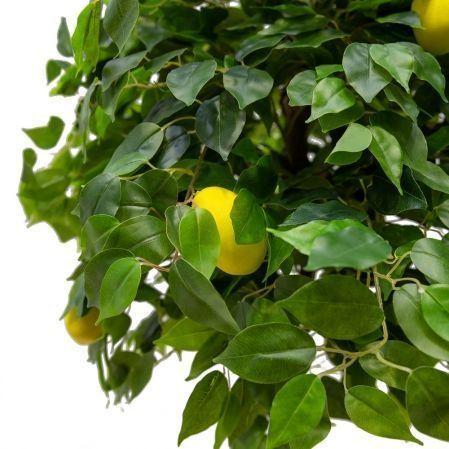 160/ОС/24-1М(з.) Лимон h160см(латекс)