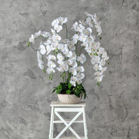 """ЦИ75/33 Орхидея (латекс) в интерьерном кашпо """"арт-бет"""""""