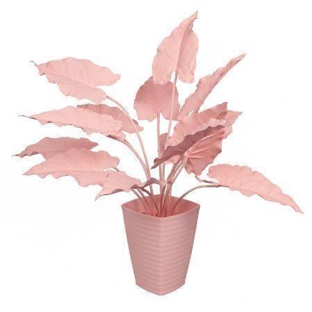 К55*2-1 Каладиум куст (розовый) h55см(силикон) в интерьерном кашпо d17см