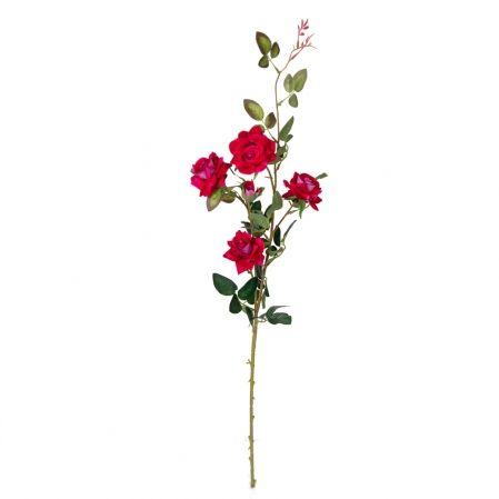 7141/А2785-03/28 Роза кустовая бархатная*5 d7; h87см(пурпур)